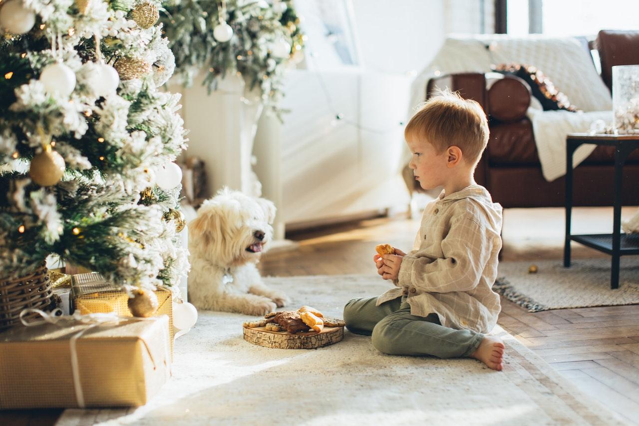Czy masz już pomysł co podarować Twojemu psu? Zestawienie najlepszych prezentów dla psa!