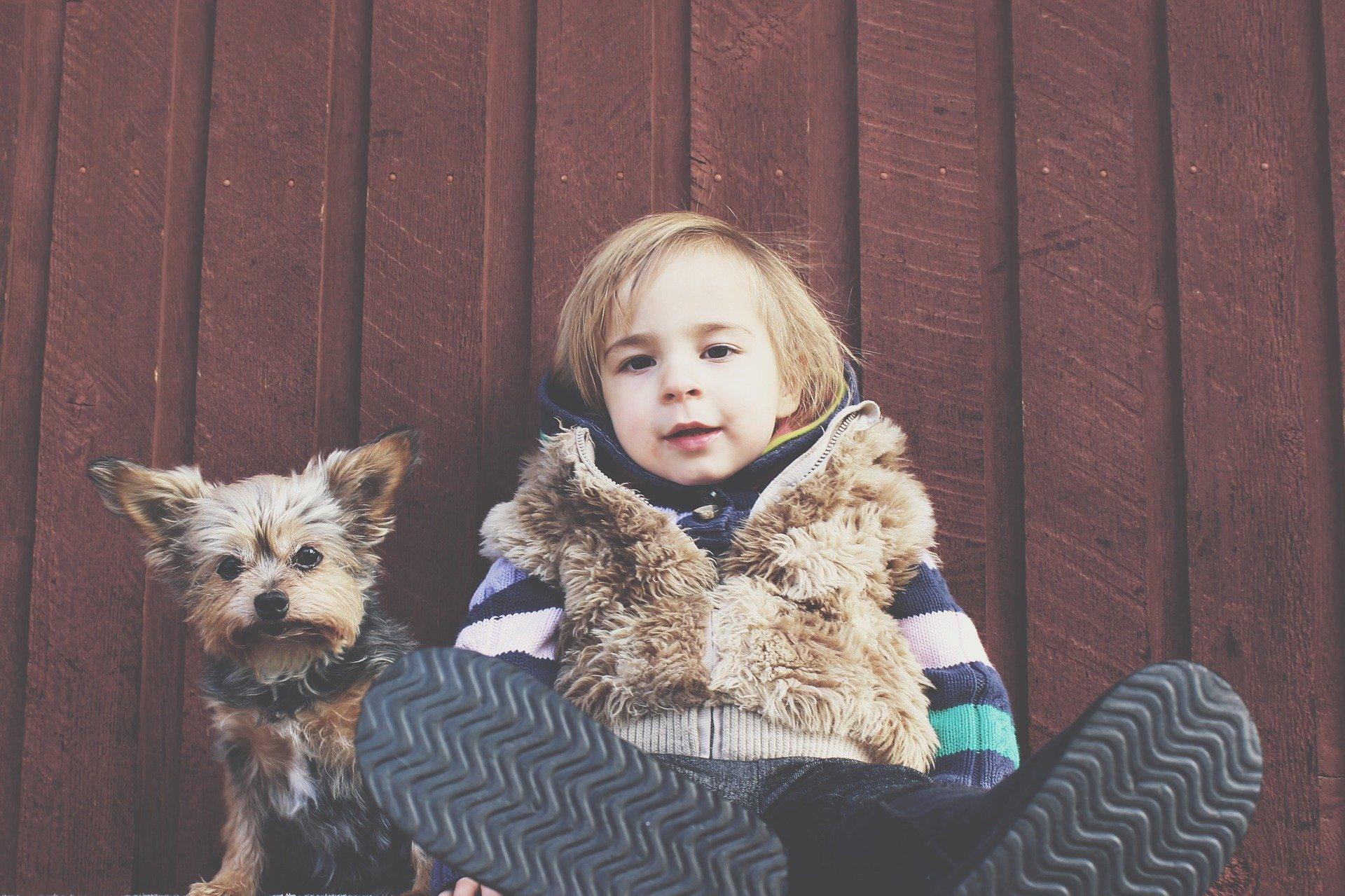 Pies z włosami może być przyczyną reakcji alergicznych, ponieważ nie tylko sierść uczula. Przyczyną uciążliwych objawów chorobowych mogą być złuszczone komórki naskórka, roztocza, pasożyty skórne, wydzieliny i wydaliny.