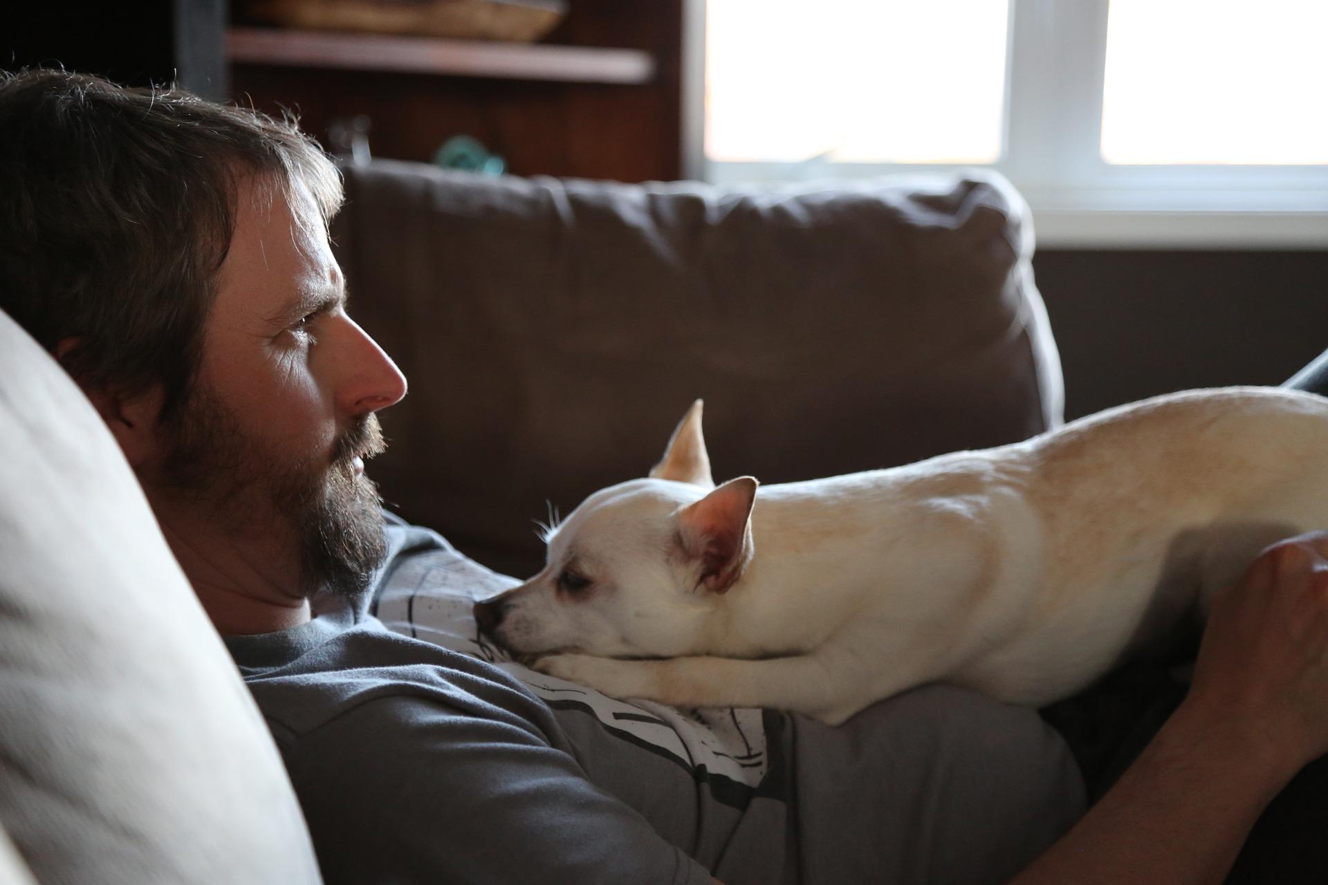 Ciągłym wymiotom towarzyszy ryzyko odwodnienia, które jest stanem zagrożenia życia. Im pies młodszy i mniejszy, tym szybciej i bardziej jest narażony na odwodnienie.