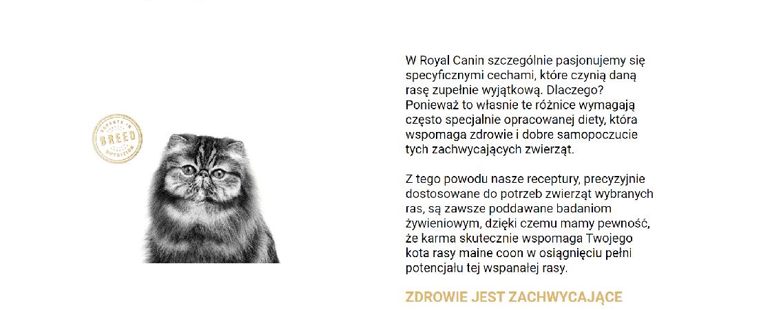 Royal Canin karma dla persów 2 kg