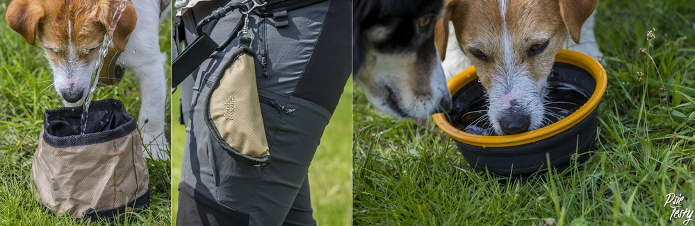 Miska podróżna dla psa jest bardzo przydatna podczas wyjazdów, szczególnie latem.