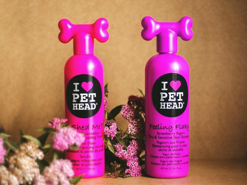 Dwa szampony do mycia psa.