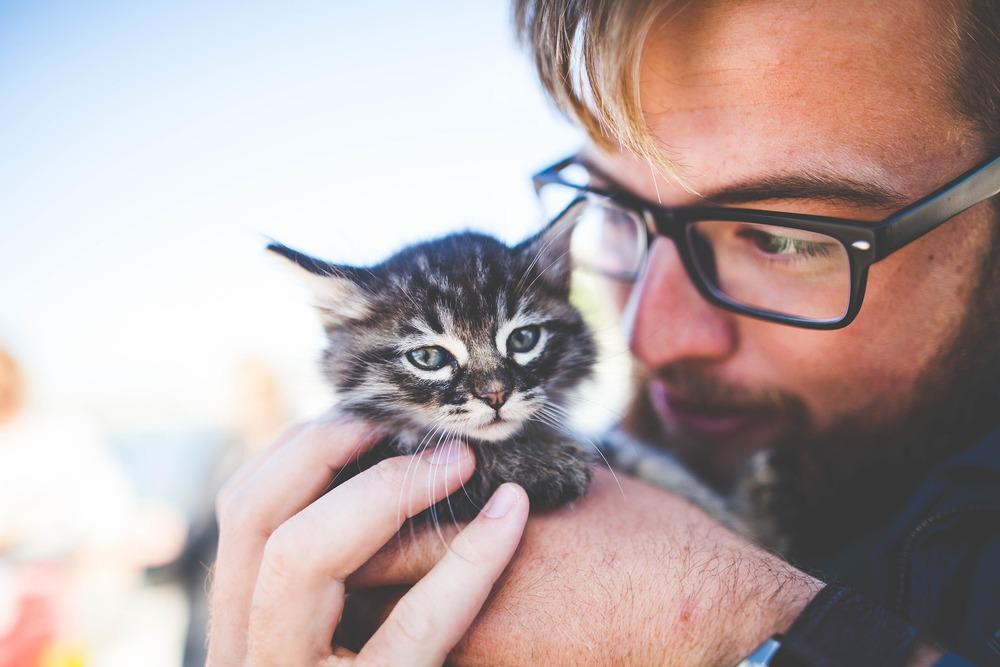 Kocięta można odrobaczać już w około 4 tygodniu ich życia, w zależności od ich kondycji. Zawsze jednak należy skonsultować to z lekarzem weterynarii.
