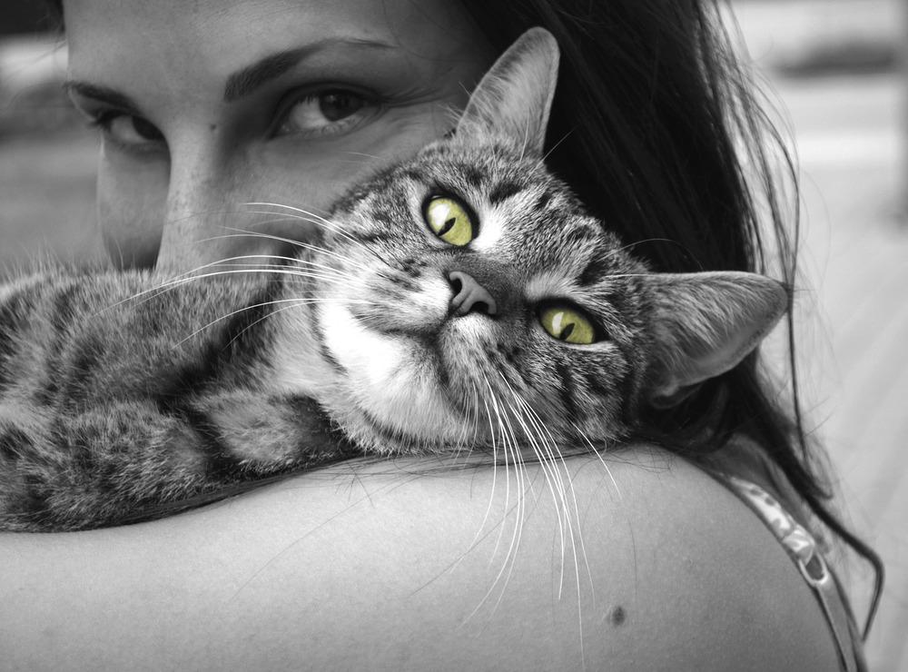 Czarno-białe zdjęcie kota na rękach pani. Pani całuje kota. Tylko oczy kota są w kolorze - zielone.