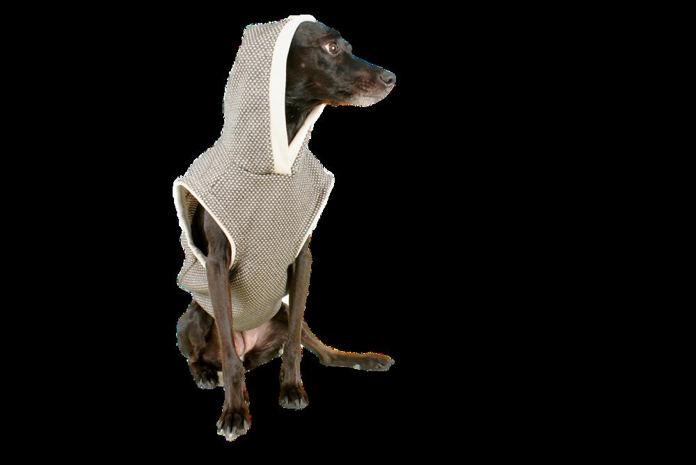 Ubranka dla psa czasami są niezbędne, aby nie przeziębić naszego pupila.