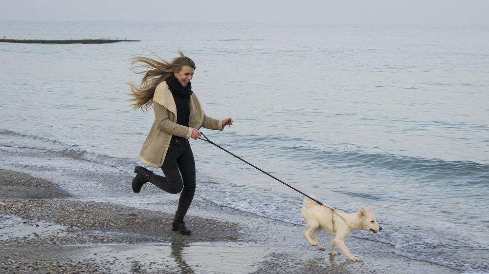 Bieganie z psem to świetna zabawa. W zimę Pani biega ze swoim psem i świetnie się bawią.