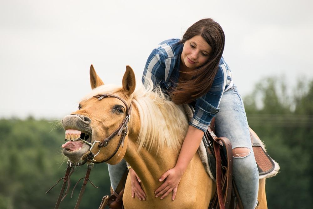 Jeździec powinien znać sygnały ostrzegawcze koni i zauważać zmiany w ich zachowaniu. To w stadninie koni jest podstawą do dobrej współpracy.