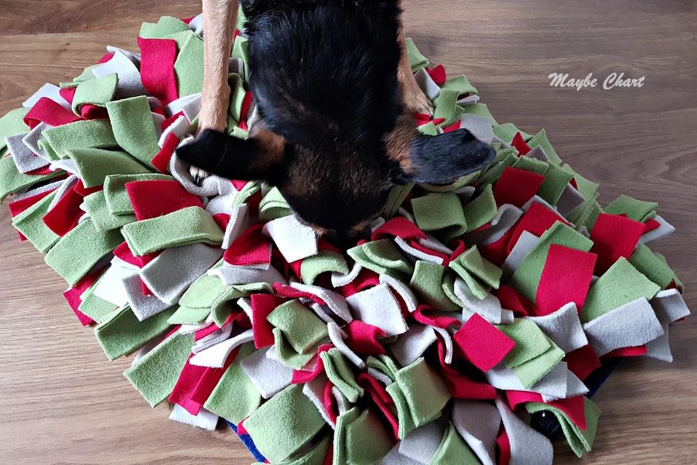 Mata węchowa dla psów ćwiczy ich węch i zapewnia atrakcje węchowe.