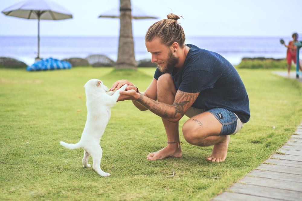 Młody pan trenuje ze szczeniakiem, na polanie z widokiem na morze.