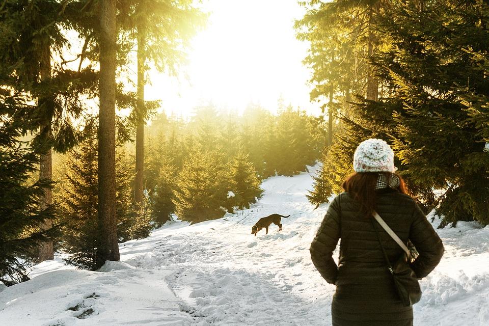Spacery zimą z psem może być przyjemny, kiedy się do niego odpowiednio przygotujemy.