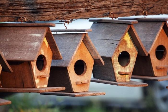 Zawieszone budki lęgowe dla ptaków.