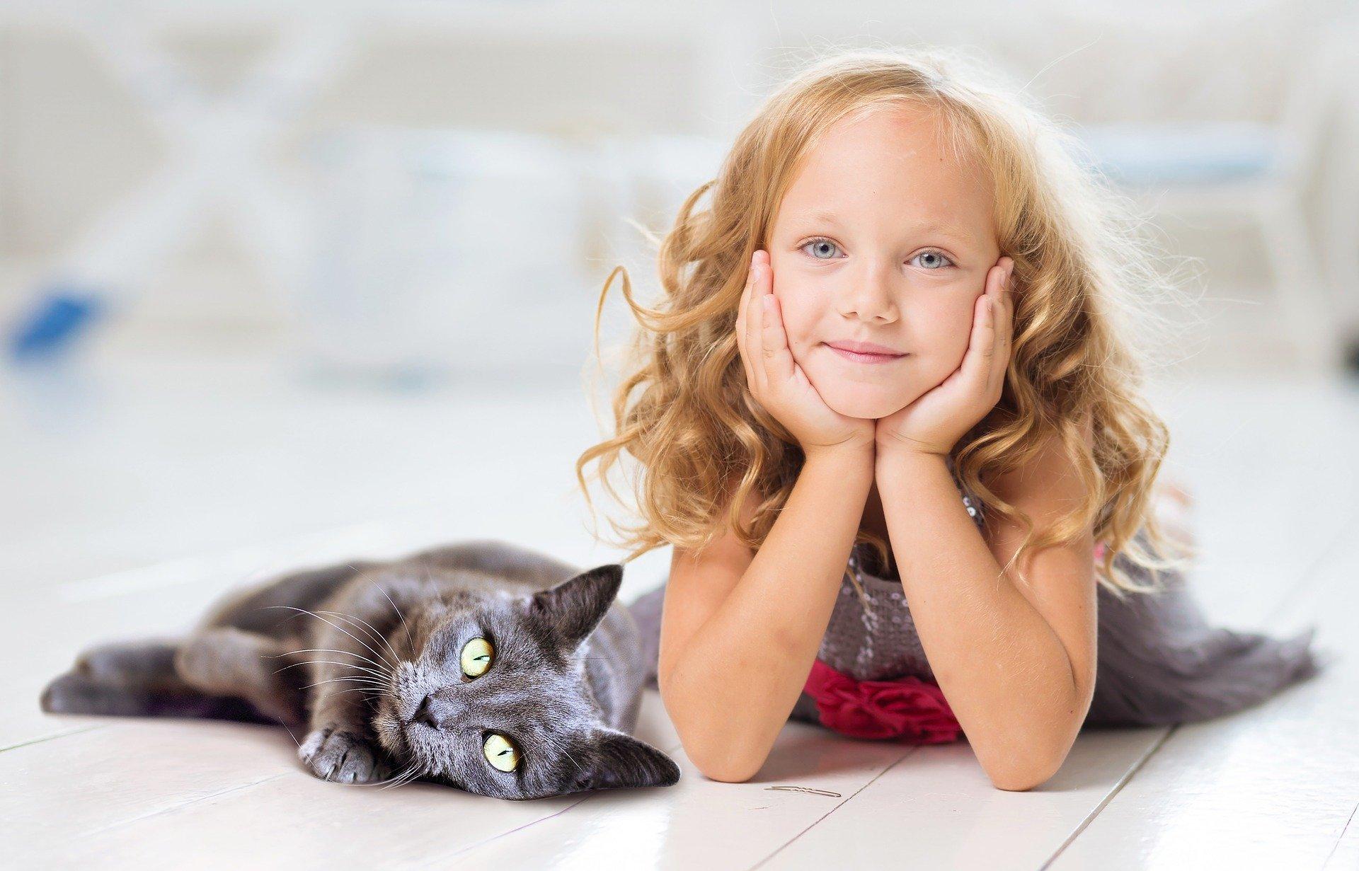 Decydując się na zwierzę należy wziąć pod uwagę wiele rzeczy i czynników. Warto sprawdzić czy żaden z domowników nie ma alergii na sierść, a mając dziecko najlepiej wybrać osobnika wykazującego cechy cierpliwości, łagodności i unikania konfliktów.