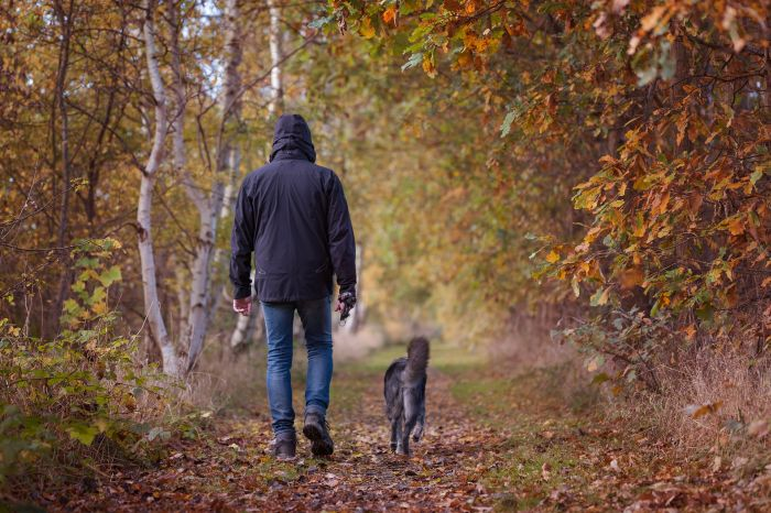 Mężczyzna na spacerze z psem w lesie