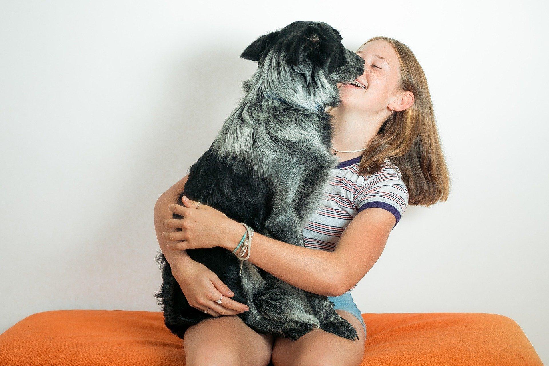 Trening z psem powinien być zabawą dla obu stron. Najlepsze rezultaty uzyskuje się poprzez pochwały i nagrody, nie kary.