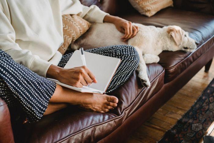 Pies leży na kanapie obok kobiety z notatnikiem