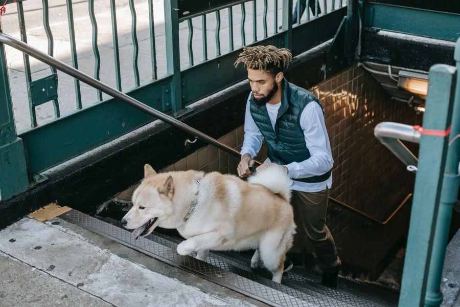 Opiekun z psem śpieszą się na pociąg na peronie.