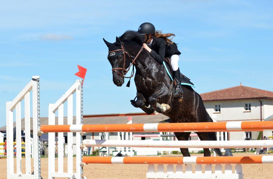 Aby zacząć skoki przez przeszkody na koniu należy mieć opanowane podstawowe style jazdy konnej, takie jak stęp, a nawet galop.