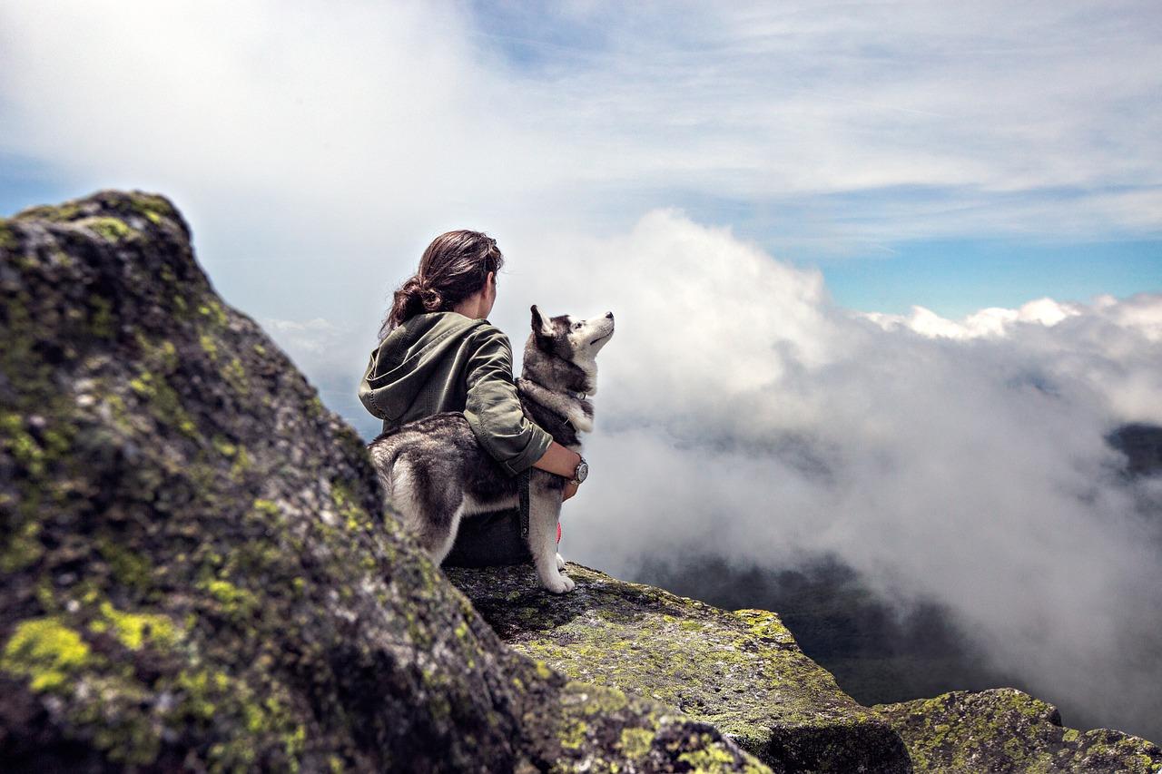 Husky siedzi wraz z opiekunem na szczycie góry. Spora dawka ruchu i wysiłku to dla psów tej rasy podstawa.