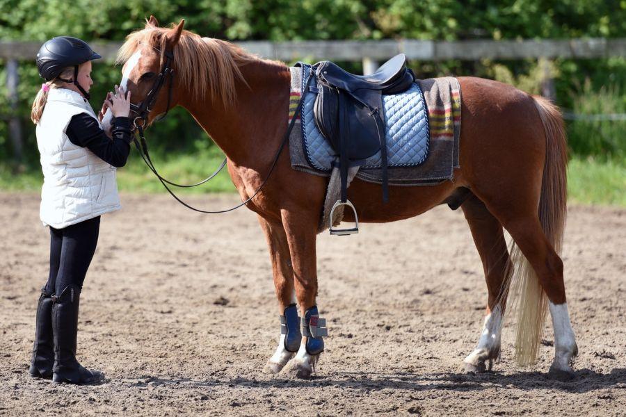 Bryczesy, toczek, kamizelka i sztyblety, czyli buty jeździeckie stanowią całościowy strój jeździecki.