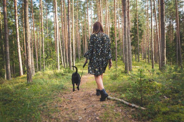 Dziewczyna z psem na spacerze w lesie