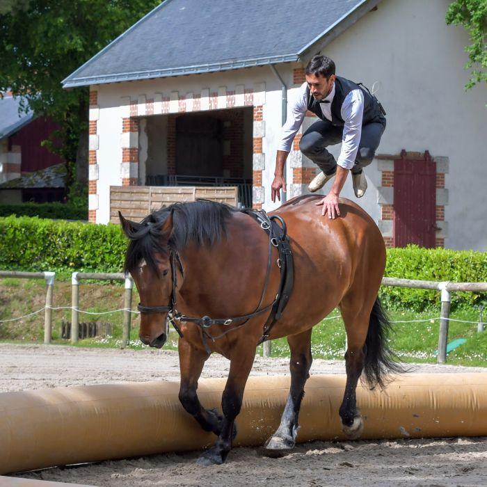 Woltyżer wykonuje skok na konia.