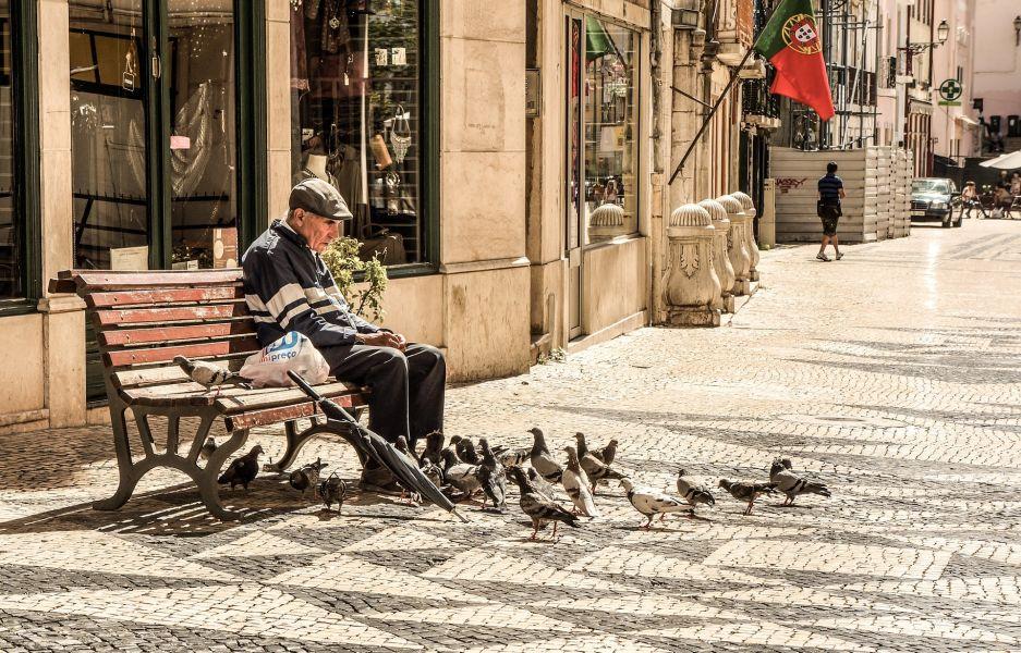 Karmienie gołębi na rynku jest dosyć popularnym widokiem. Należy jednak pamiętać, że gołębie nie powinny jeść chleba.