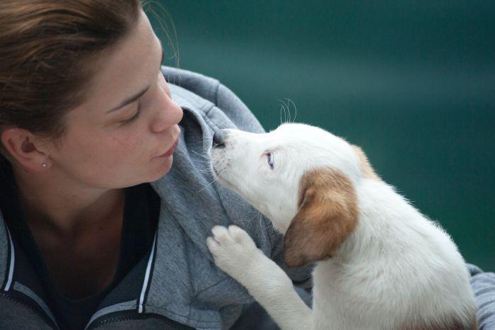 Kobieta całuje psa.