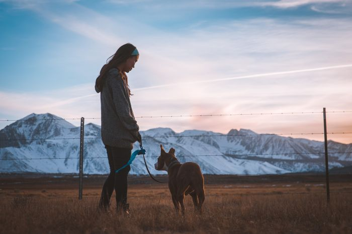 Dziewczyna z psem na tle gór i pastucha elektrycznego.