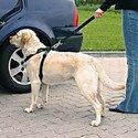 Szelki samochodowe dla psa L