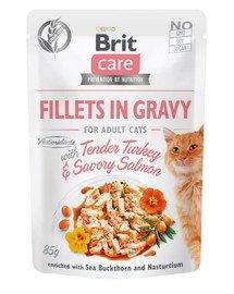 Care Cat Fillets in gravy 85 g filety indyka i łososia w sosie
