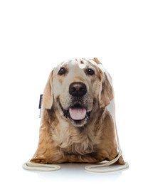 Plecak worek z nadrukiem Golden Retriever