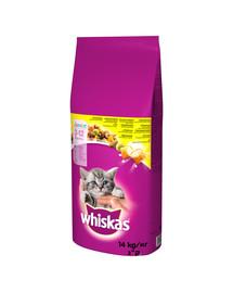 Junior 14 kg - sucha karma dla kotów z kurczakiem