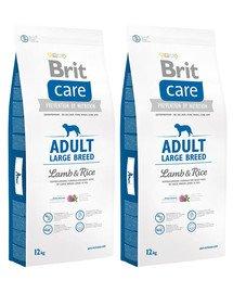 BRIT Care Adult Large Breed lamb & rice 24 kg (2 x 12 kg)