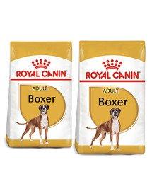 ROYAL CANIN Boxer Adult karma sucha dla psów dorosłych rasy bokser 24 kg (2 x 12 kg)