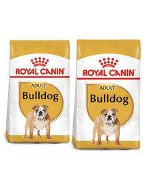 ROYAL CANIN Bulldog Adult karma sucha dla psów dorosłych rasy bulldog 24 kg (2 x 12 kg)
