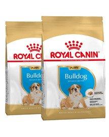 ROYAL CANIN Bulldog Puppy 24 kg (2 x 12 kg) sucha karma dla szczeniąt do 12 miesiąca, rasy buldog angielski