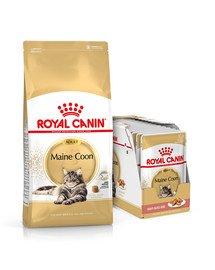 ROYAL CANIN Maine coon 12kg + mokra karma Mainecoon 12x85 g