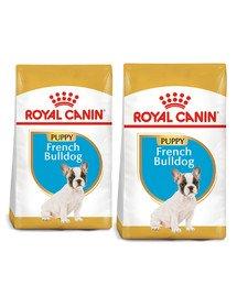 ROYAL CANIN French Bulldog Puppy Junior karma sucha dla szczeniąt do 12 miesiąca, rasy bulldog francuski 20 kg (2 x 10 kg)
