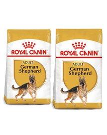 ROYAL CANIN German Shepherd Adult karma sucha dla psów dorosłych rasy owczarek niemiecki 22 kg (2 x 11 kg)