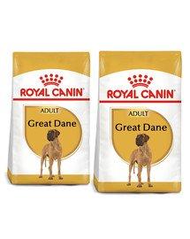 ROYAL CANIN Great Dane Adult karma sucha dla psów dorosłych rasy dog niemiecki 24 kg (2 x 12 kg)