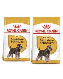 ROYAL CANIN Miniature Schnauzer Adult 15 kg (2 x 7.5 kg) karma sucha dla psów dorosłych rasy sznaucer miniaturowy