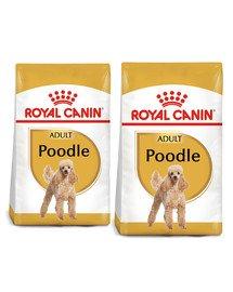 ROYAL CANIN Poodle Adult 15 kg (2 x 7,5 kg) sucha karma dla dorosłych psów rasy pudel