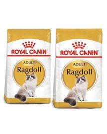 ROYAL CANIN Ragdoll adult 20 kg (2 x 10 kg) karma sucha dla kotów dorosłych rasy ragdoll
