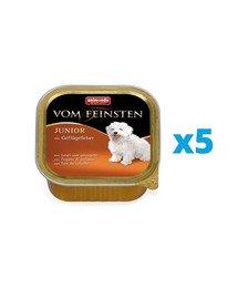 ANIMONDA Vom Feinsten Junior zestaw z wątróbką drobiową 5 x 150 g