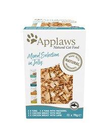 Cat Pouch Multipack 12 x 70 g karma dla kotów mix smaków w galarecie