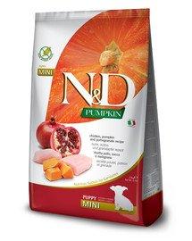N&D Pumpkin Dog Puppy Mini chicken, pumpkin & pomegranate 7 kg kurczak, dynia i granat dla szczeniąt