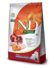 N&D Pumpkin Dog Puppy Medium & Maxi chicken, pumpkin & pomegranate 12 kg kurczak, dynia i granat dla szczeniąt