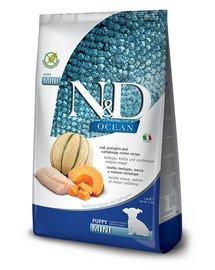 N&D Ocean Dog Puppy Mini cod, pumpkin & cantaloupe melon 800 g dorsz, dynia i melon kantalupa dla szczeniąt i suk w ciąży