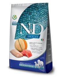 N&D Ocean Dog Adult Medium & Maxi salmon, cod, pumpkin & cantaloupe melon 2.5 kg łosoś, dorsz, dynia, melon kantalupa