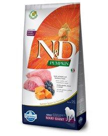 N&D Pumpkin Dog Adult Giant Maxi lamb & bluberry 12 kg jagnięcina i borówki